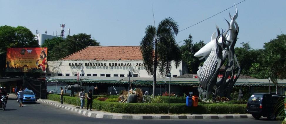 Wisata Kebun Binatang Surabaya Indonesia
