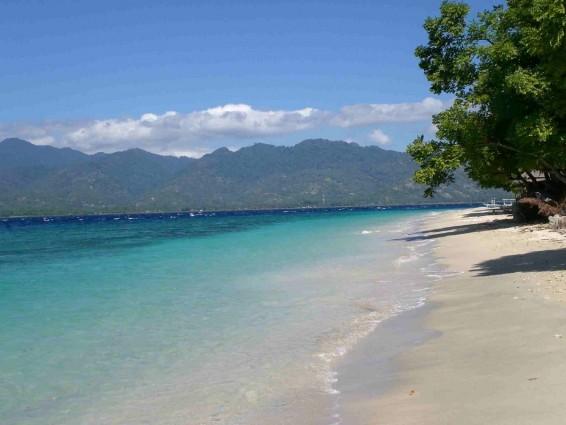 Wisata Pantai Pasir Putih di Situbondo yang Bagus