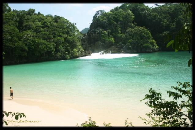 Wisata Pulau Sempu di Malang yang Pemandangannya Hijau