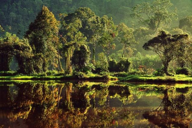 Wisata Alam Situ Gunung Sukabumi