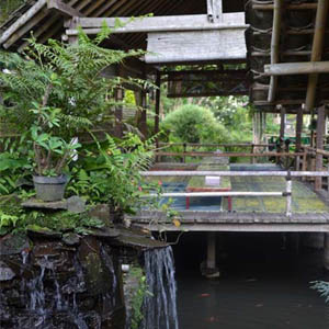 Rumah Makan Moro Lejar dengan Makanan Laut Bakar